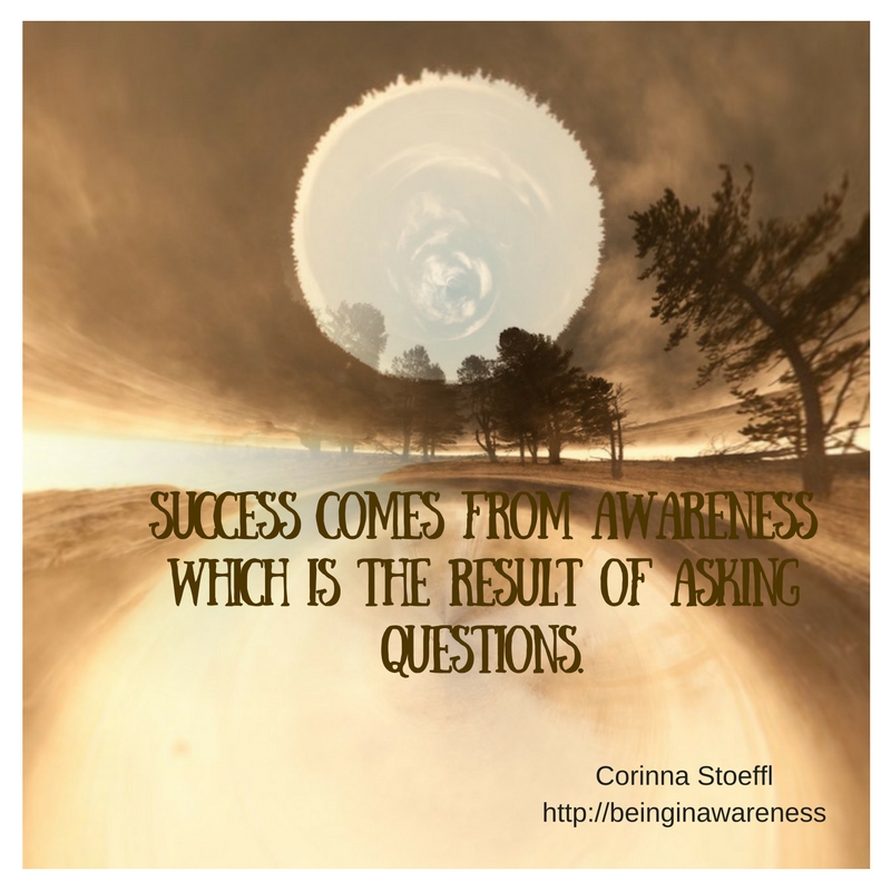 success-comes-from-awareness-which-is-the-result-of-asking-questions