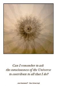 universe contribute